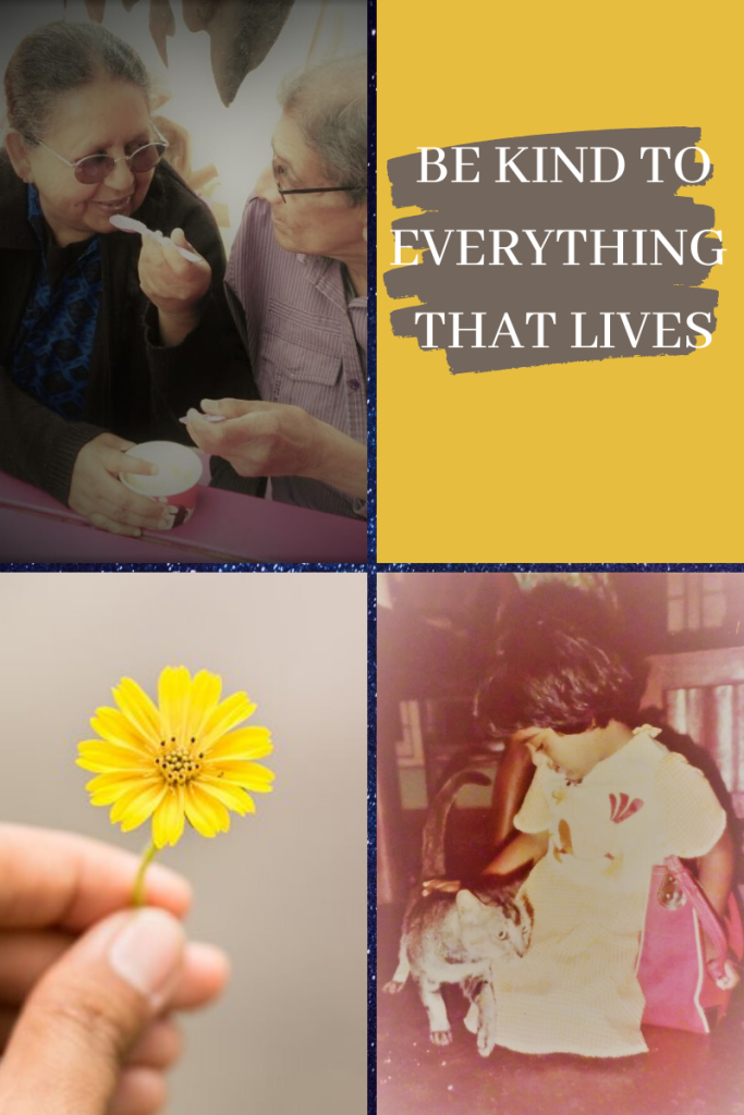 four-grid box. top left elderly man and women sharing ice cream tub. top right yellow background with brown splodge of paint with letters across 'Be kind to everything that lives.' bottom left hand holding yellow small flower. bottom right young girl seated on floor stroking grey cat with red bag beside her.